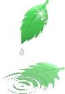 ill_leaf01.gif