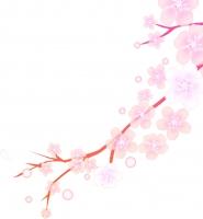 flower1600.jpg