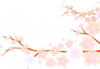 flower1601.jpg